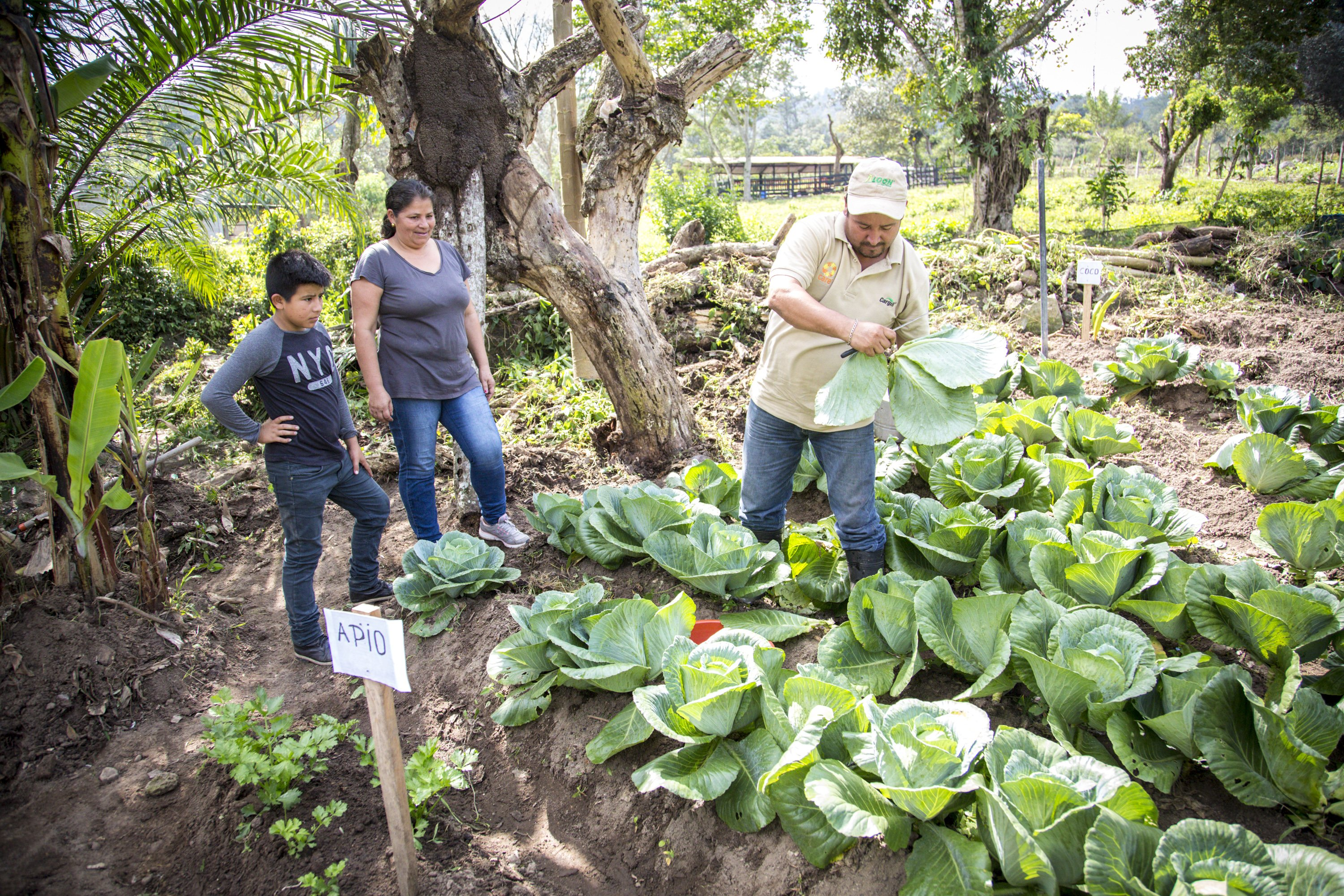 Family Garden, Terreritos.Santa Cruz de Yojoam Nourishing the Future Project w CARE and Cargill, small family garden supporting families' FNS.  This is the family farm of Adriana García Fernández , , David Hernandez Moran, 48, and their children Adrian, and Maria Janeth, 16