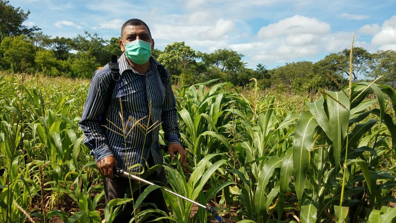 Seguridad Alimentaria: ¡Insumos que llegan a tiempo!